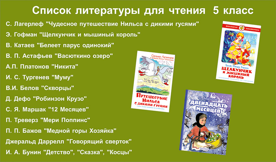 Внеклассное чтение 9